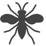 Billig Bekæmpelse af hvepse og Gedehams på Sjælland og i København